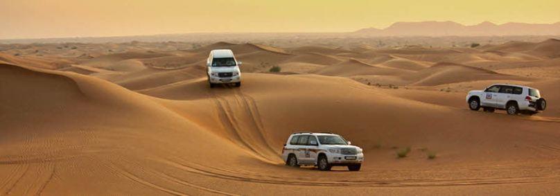 سافاری در دبی