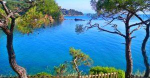 جزیره پرنس ترکیه