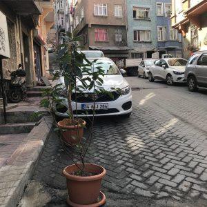 neva flats hotel istanbul